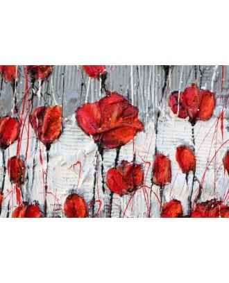 melancholy poppies